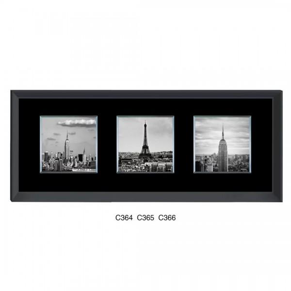 c364-c365-c366