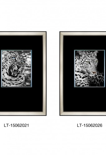 lt-15062021-lt-15062026