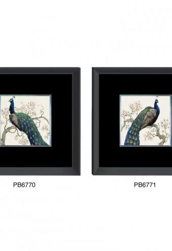 pb6770-71b
